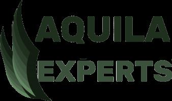 Aquila Consultoria
